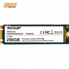 SCORCH 256GB M.2 2280 PCIE/ up to 1700MB R & 780MB W
